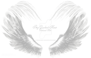 Airbrushed Wings - White 01 by Thy-Darkest-Hour