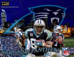 Carolina Panthers by tmarried