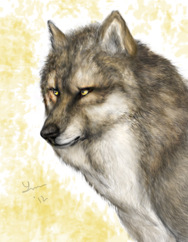 Wolf Bust by Cheddarness8