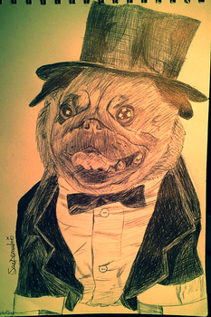 Pug in a Tuxedo Biro Drawing by SaeTemaki