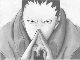 Shikamaru by negative-creeq
