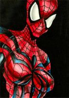 Spider-Girl Sketch Card by JohnHaunLE