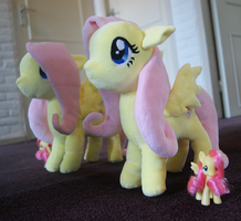 Fluttershy plushie by Knoets