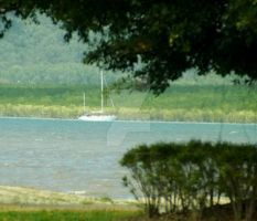 Sloop in Cairns Estuary by tablelander
