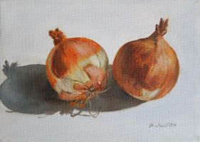 Onions by birchley