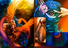 The Peacock Dance by Quoosa