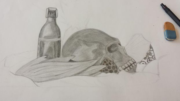 Still life - not finish yet by Colax3