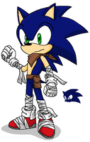 Sonic Boom New Sonic by emichaca