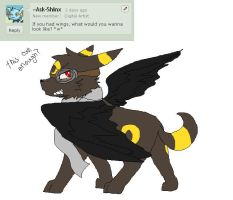 Question 15: WINGS?! HEEEELLL YEAH! by Ask---Umbreon