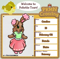 PKMN Crossing Application - Candice by madlallapops