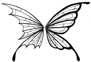 Two Sided Butterfly by Youkos