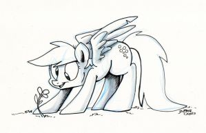 Sketch - Flower! by sophiecabra