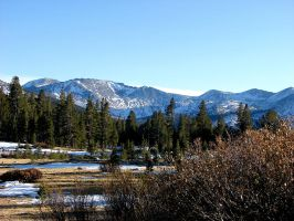 Tioga Pass Summit 2 by Synaptica