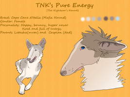 TNK's Pure Energy by AixaRawr