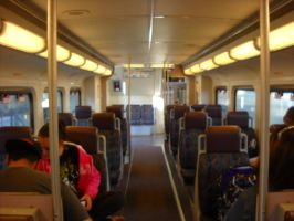 .:Train to San Clemente Pier Bay:. by Iceelace