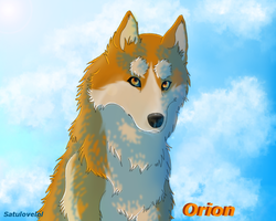 Orion by SatuloveLOL