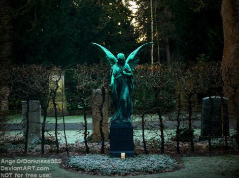 The dark Angel -  German Cemetery 2016 by AngelOfDarkness089