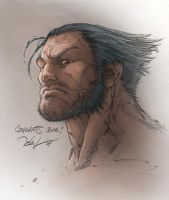 Quick wolvie color by pochrzas