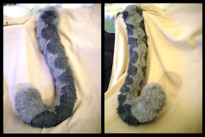 Tasha Tail by CuriousCreatures