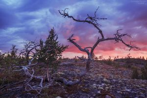 Karelian sunset by KARRR