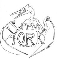 York District Shirt Design by birdboy5