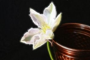 Fantasy FX Flower Stock 3 by Moonchilde-Stock