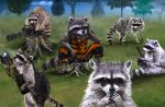 The problem with Raccoons... by Kyasha