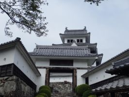 Gujo Hachiman Castle 5 by SHiNiGAMi-Xiii