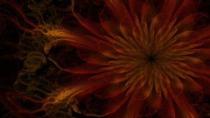 Blazing Flower by SinInjection