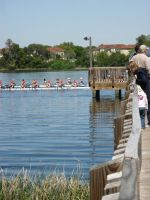 Spectating at the Regatta by Elswyth-the-Dryad