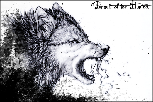 KP.:Pursuit of the Hunted:. by WhiteSpiritWolf