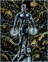 The Silver Surfer by Lannytorres