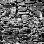 the wall by augenweide