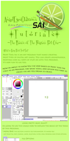 Basics of Paint Tool Sai Pt 1 by Neko-CosmicKitty