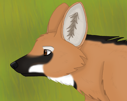 Maned Wolf by CherrySapphire