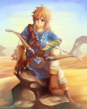 WiiU Link by marymarhta
