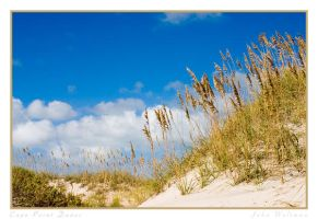 Cape Point Dunes by repugnant
