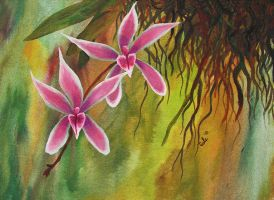 Pink Epiphitic Orchids by ChristinaCole