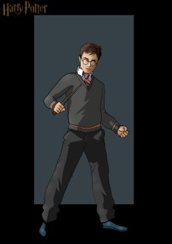 harry potter by nightwing1975