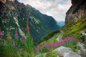 Tatry by Bunt202