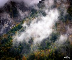 Slope in autumn by rdalpes