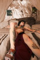 Leia Harem Preview Pic 1 by PixelVixens