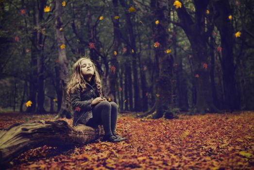 Once upone a time there was a forest... by monikha