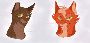 Brambleclaw and Squirrelflight .Gender bended. by CoalPatchOfDuskClan