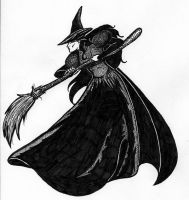 Elphaba with Broom by justdbear