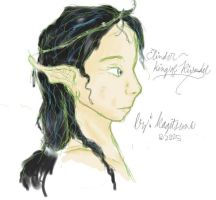 Elrond: King of Rivendell by Kagitsune
