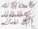 Dragon hands and feet Tutorial by Natsuakai