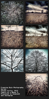 Freezing Rain Photography Series by coinoperatedbear
