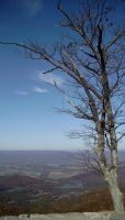 Autumn 09 Shenandoah Mts Pic 2 by Stacey1mb
