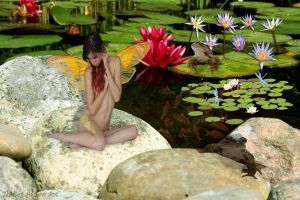 Fairy Pond by Shirley-Agnew-Art